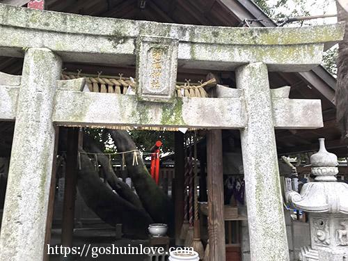 裏の神社の鳥居アップ